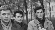 «Застава Ильича» и «Асса» вошли в юбилейную коллекцию Роттердамского кинофестиваля — новости кино — 4 апреля 2021