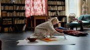 Молодая художница Туве Янссон попадает на вечеринку писателей